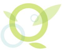 Qivana logo 2