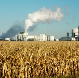 Non corn ethanol